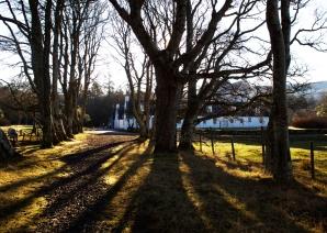 Applecross estate in the morning sun.